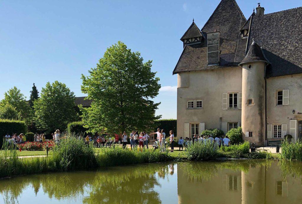 Olympiade Beaujolaise - Team building autour de la viticulture